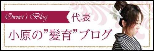 """代表 小原の""""髪育""""ブログ"""