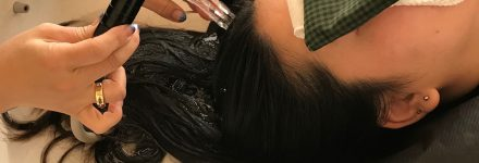 Haskap hair treatment http://www.ankh-jp.com/english/