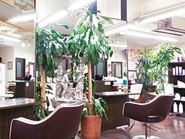 札幌 美容室おあしすあんく 美容師・スタイリスト求人情報イメージ3