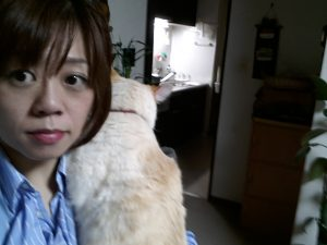 猫 http://www.ankh-jp.com