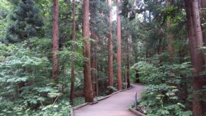 円山公園 http://www.ankh-jp.com