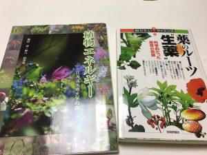 植物 札幌 http://www.ankh-jp.com