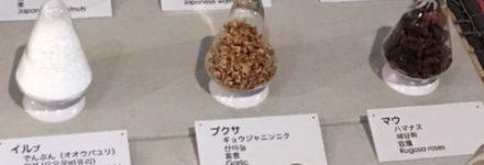 アイヌ文化 http://www.ankh-jp.com
