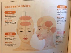 顔 http://www.ankh-jp.com