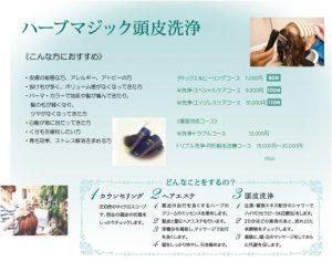 ハーブマジック 頭皮洗浄 http://www.ankh-jp.com