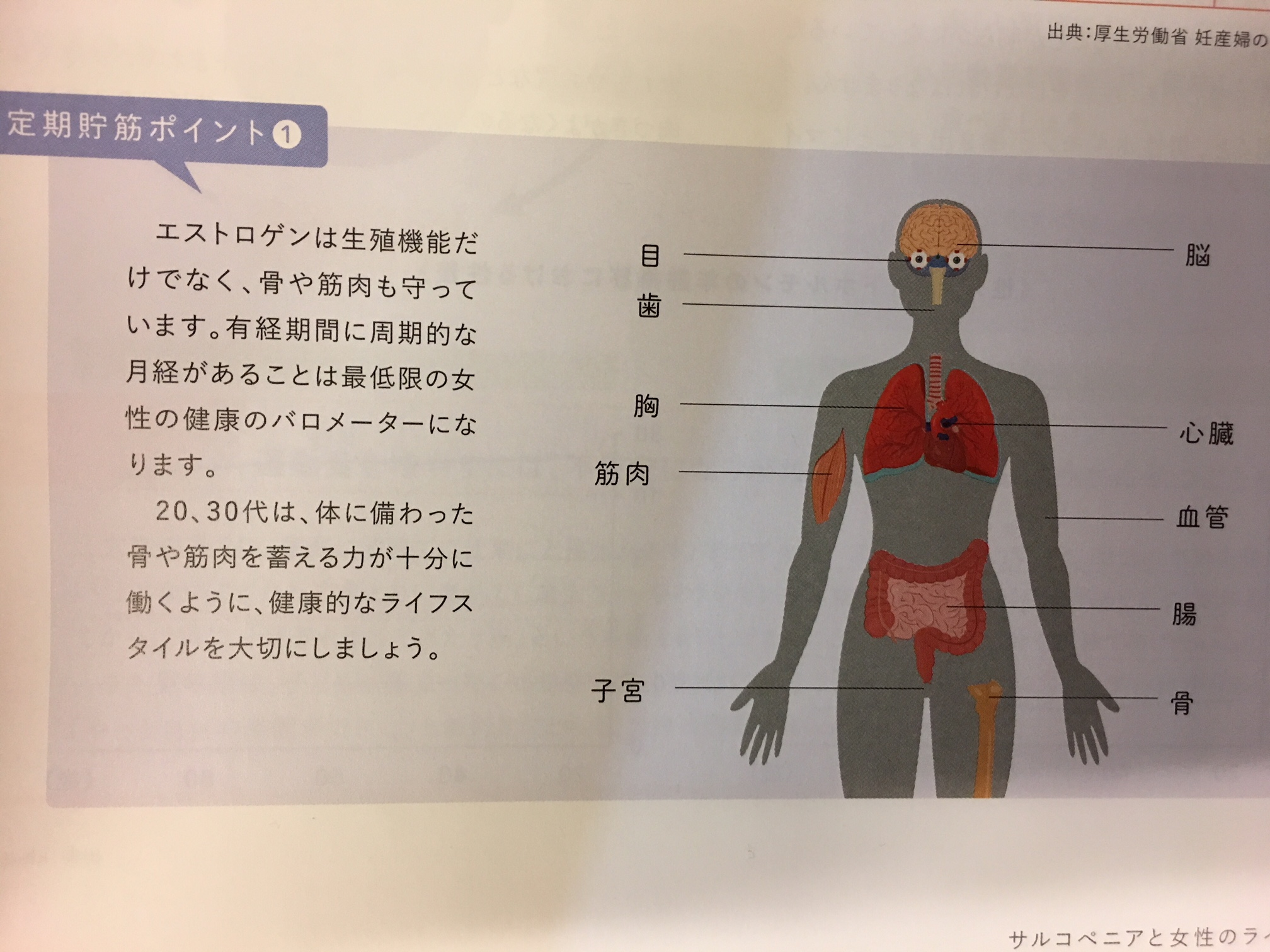 女性ホルモン エストロゲン http://www.ankh-jp.com