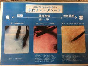 scalp check up total balance beauty concept https://www.ankh-jp.com/english/