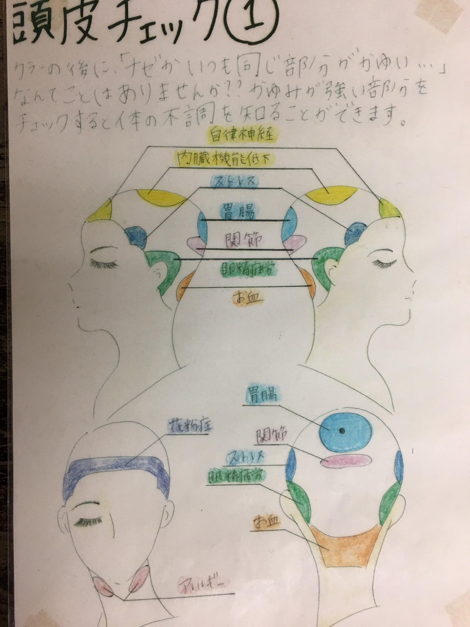 頭皮診断 頭の反射区 カウンセリング http://www.ankh-jp.com