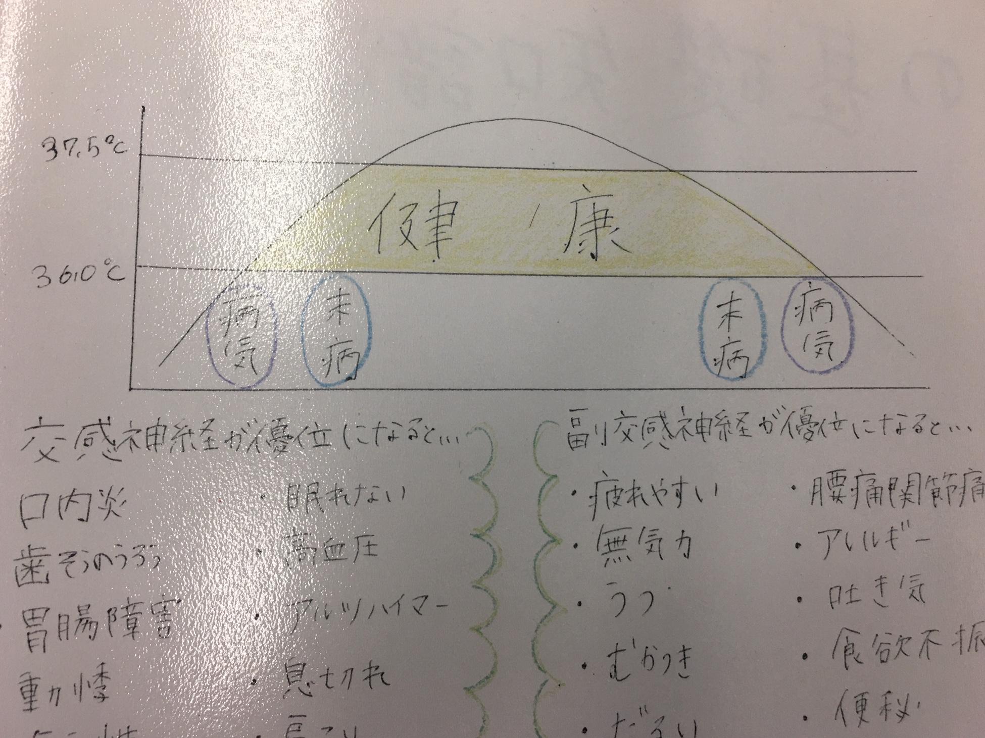 自律神経 http://www.ankh-jp.com