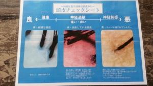 予防美容 ハーブマジック 頭皮洗浄 http://www.ankh-jp.com