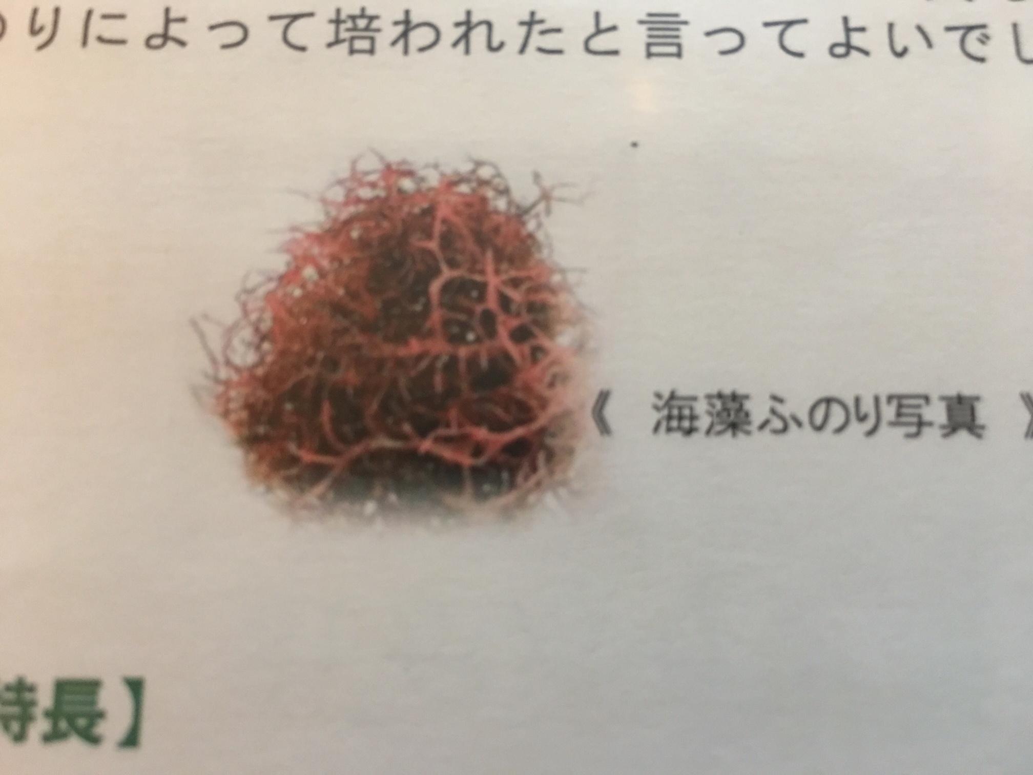 トリートメント http://www.ankh-jp.com