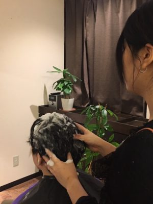 Haskap beauty head spa http://www.ankh-jp.com/English/