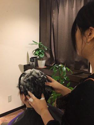 Haskap scalp therapy https://www.ankh-jp.com/english/