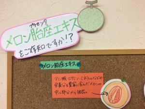 メロン 植物プラセンタ http://www.ankh-jp.com